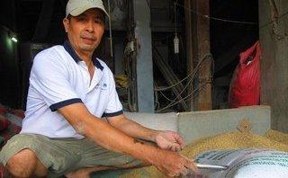 Tin nhanh - Vụ nhặt được vàng trong bao lúa ở Bình Định: Bí ẩn chủ nhân thực sự
