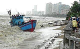 Xi nhan Trái Phải - Thiệt hại do bão, cứ đổ tại người dân chủ quan là xong?