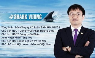 Tài chính - Ngân hàng - Công ty của 'cá mập' Vương bị rao bán khoản nợ 74 tỷ đồng