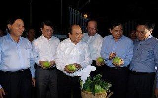 Xã hội - Thủ tướng thăm mô hình hội quán tại Đồng Tháp