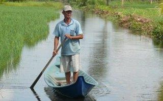 Xã hội - Phớt lờ quy hoạch, người dân tự ý ngập mặn đất lúa để nuôi tôm