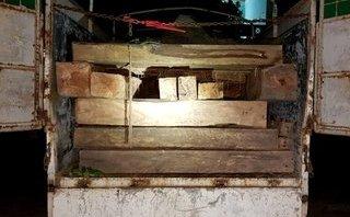 Tin nhanh - Bình Định: Hai chiến sĩ công an bị thương khi truy bắt xe chở gỗ lậu
