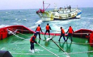 Tin nhanh - Chìm tàu cá, 4 ngư dân mất tích