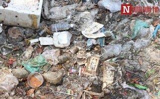 Môi trường - Những con kênh bị bức tử bởi rác thải sinh hoạt tại TP.HCM
