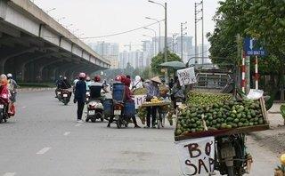Xã hội - Hà Nội: Dẹp hoa quả vỉa hè, người bán hàng rong về đâu?