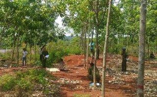 An ninh - Hình sự - Sơn La: Điều tra nguyên nhân nam thanh niên chết bất thường ở bìa rừng