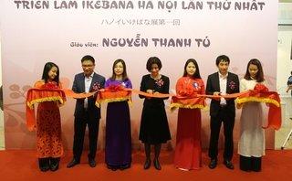 Văn hoá - Lần đầu tiên tại Hà Nội: Triển lãm Nghệ thuật Ikebana của Nguyễn Thanh Tú được ra mắt