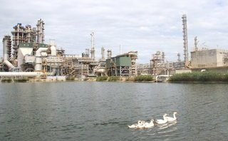 """Đầu tư - Nhà máy Lọc dầu Dung Quất đạt Top 10 """"Nhà máy xanh thân thiện"""" 2018"""