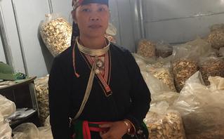 Cần biết - Vì sao người mắc bệnh xương khớp tìm đến lương y Triệu Thị Hòa?
