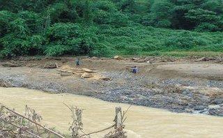 Điểm nóng - Thanh Hóa: Lũ quét đi qua, gỗ rừng tràn về ngổn ngang sông, suối