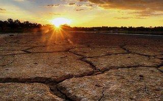 Điểm nóng - Biến đổi khí hậu làm 250.000 người tử vong mỗi năm do bệnh dịch