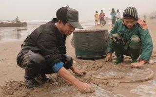 Môi trường - Thanh Hóa: Nhọc nhằn nghề đánh bắt sứa biển