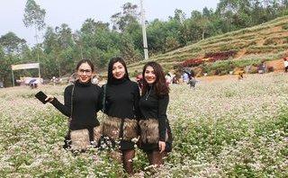 Xã hội - Thiếu nữ trên đồi hoa tam giác mạch 'vạn người mê' ở xứ Nghệ