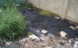 Môi trường - Xử lý các công ty đổ hàng tấn chất thải rắn độc hại ra môi trường