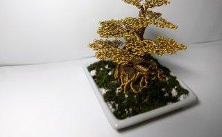 Xã hội - Nam sinh 'hốt bạc' nhờ bán cây bonsai bằng đồng trong dịp Tết