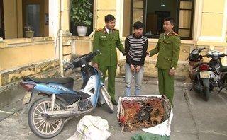 An ninh - Hình sự - Bắt giữ 'đạo chích' mang lệnh truy nã, vẫn đi ăn trộm