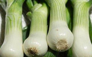 Tư vấn - Ngăn chặn mầm mống ung thư bằng loại rau gia vị phổ biến nhất