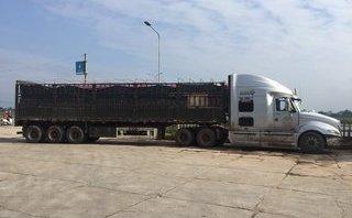 Điểm nóng - Quảng Nam: Bắt xe tải đổ trộm chất thải