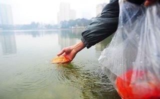 Cuộc sống xanh - Bật mí vị trí thả cá chép tiễn ông Công, ông Táo đẹp nhất