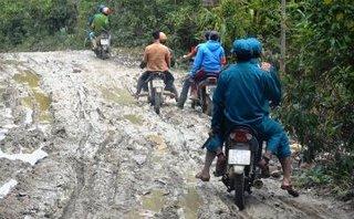 Cuộc sống xanh - Quảng Nam: Căng thẳng giữ rừng trong dịp Tết
