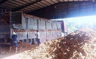 Điểm nóng - Bình Định: Lén lút xả thải ra sông, 1 công ty bị phạt gần 1,8 tỷ đồng