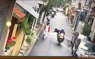 Mới- nóng - Clip: 'Cẩu tặc' ngang nhiên cướp chó trong tay chủ giữa ban ngày