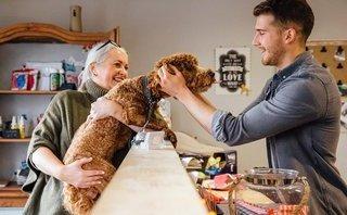 Cộng đồng mạng - Chó có khả năng đánh giá con người