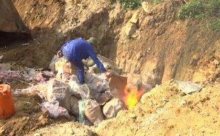 An ninh - Hình sự - Lào Cai: Bắt và tiêu hủy hàng nghìn kg chân gà không rõ nguồn gốc
