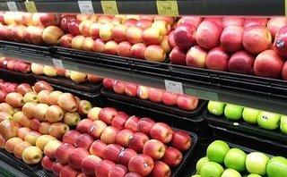 Hồ sơ điều tra - Ma trận tem mác trái cây nhập khẩu: Sự thực nguồn gốc tem mác
