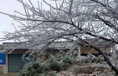 Tin nhanh - Thời tiết dưới 5 độ C, đỉnh Tà Xùa - Sơn La xuất hiện băng giá