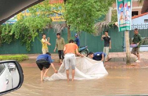 Video - Clip: Dân đổ xô ra đường, giăng màn bắt cá sau mưa lớn