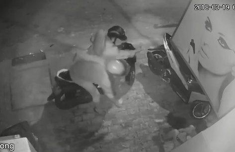 Mới- nóng - Clip: Hai thanh niên táo tợn cướp chó ngay trước mặt chủ nhà