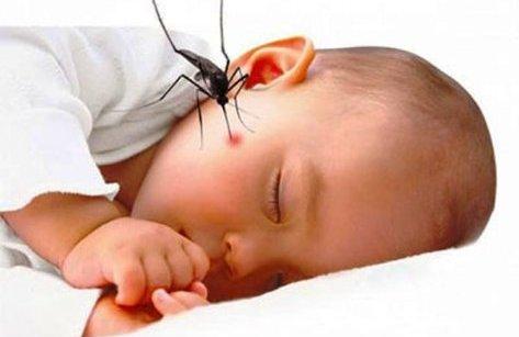 Đời sống - 4 lưu ý đặc biệt khi chăm sóc trẻ bị sốt xuất huyết