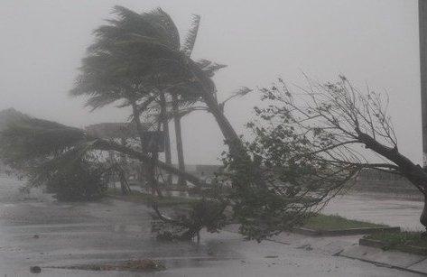 Cuộc sống xanh - Infographic: Hiểu về các cấp gió, bão