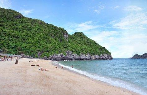 Cuộc sống xanh - Hải Phòng thiết lập khu vực bảo vệ bờ biển