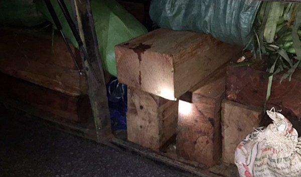 Điểm nóng - Hải Dương: Liên tiếp bắt giữ các vụ vận chuyển gỗ lậu ngay đầu năm mới