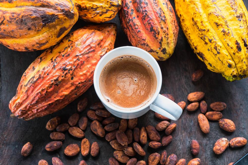 """Sức khỏe - Chuyện những cặp đôi không hoàn hảo 19: Cacao và sữa tưởng kết hợp """"keo sơn"""" nào ngờ """"như nước với lửa"""" (Hình 2)."""