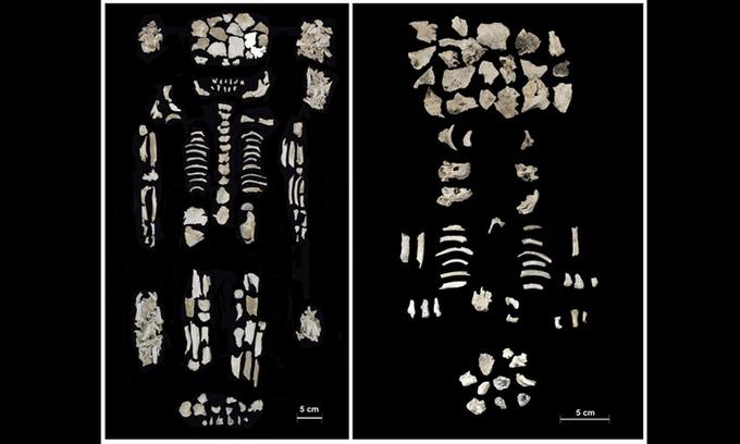 Đời sống - Chiếc bình cổ chứa hài cốt 3.500 năm của người phụ nữ và cặp song thai (Hình 2).