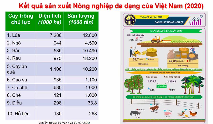Tiêu dùng & Dư luận - Cách nào cải thiện khả năng chống chịu của hệ thống lương thực Việt Nam? (Hình 2).