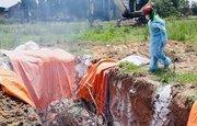 Đồng Nai: Chính thức khởi tố vụ trữ đông 4 tấn thịt heo nhiễm dịch tả heo châu Phi