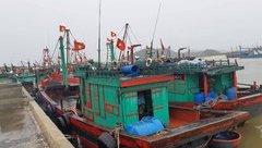 Tin nhanh - Thanh Hóa: Bão số 3 không càn quét, người dân thở phào