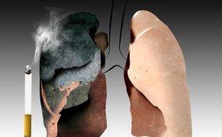 Sức khỏe - Ăn gì để phòng tránh bệnh ung thư phổi?