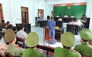 Hồ sơ điều tra - Vì sao 3 cơ quan tố tụng phải họp án trong kỳ án gói ma túy dưới gốc cây Tràm Bông?