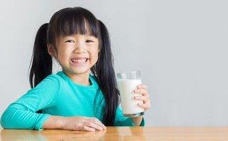 Truyền thông - Chọn sữa tươi chuẩn của Hà Lan
